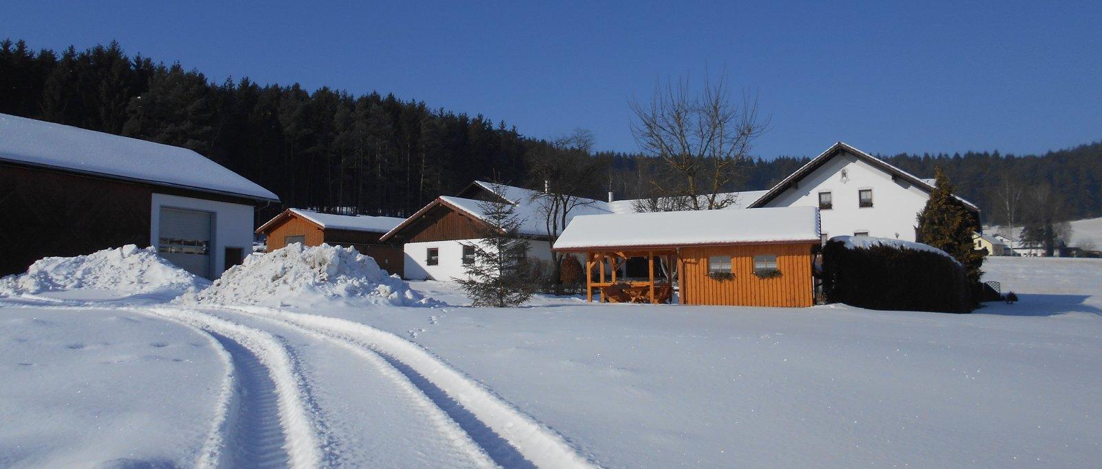 ammerhof-winterurlaub-bayerischer-wald-bauernhof-ansicht-panorama